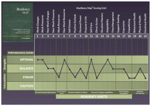 Measure-Resiliency Map