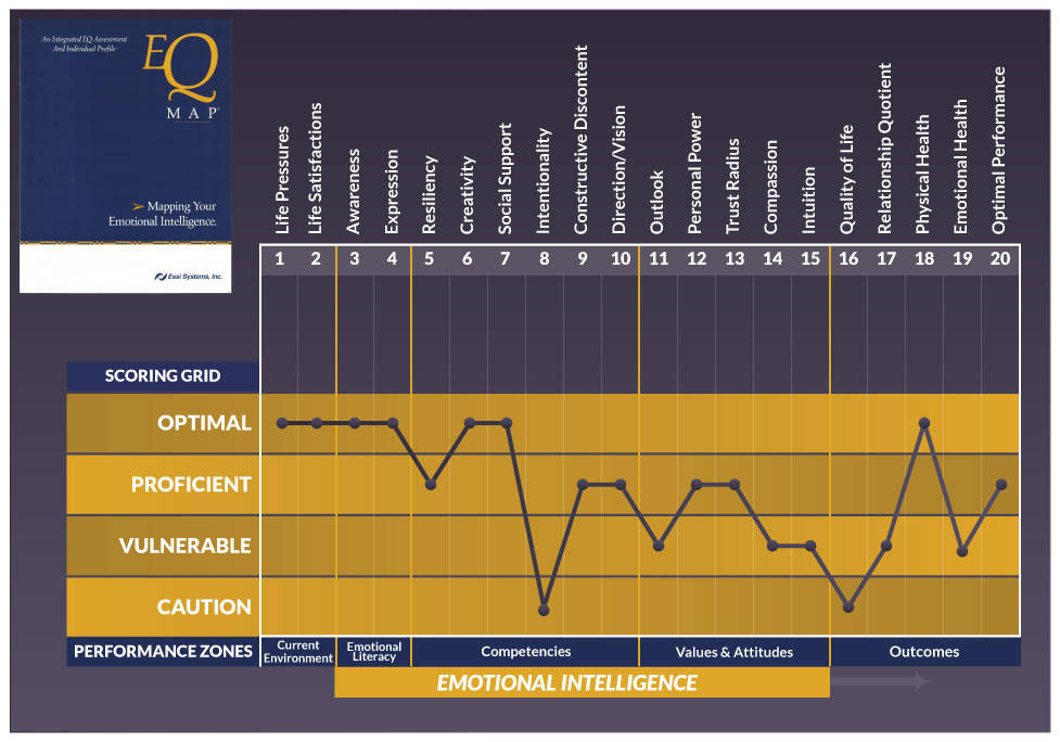 EQ Map emotional intelligence assessment Scoring Grid to develop emotional intelligence
