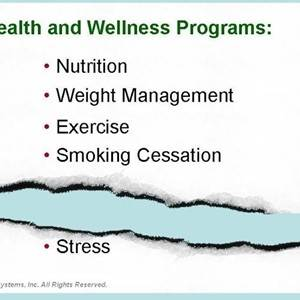 Essy Systems: The Big Lie – Health and Wellness Programs Address Stress